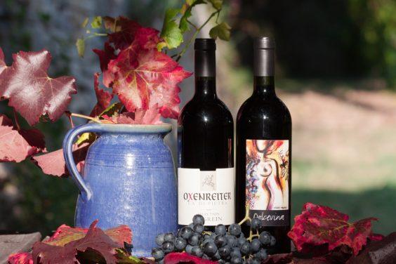 wine-1729458_1280